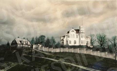 Felikso Vizbaro namas (Kauko g.)