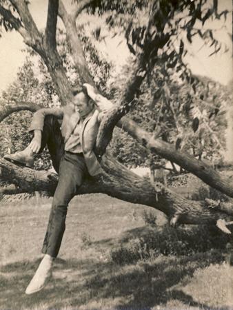 """""""Biblioteka – tai gyvenimo medis, prie kurio ateinama išmokti tobulumo"""""""