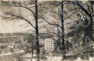 Vaizdas nuo Parodos kalno į Naujamiestį. XX a. 3–4 deš.