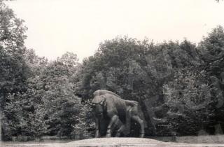 "D. Matulaitės skulptūra ""Stumbras"" Žaliakalnio ąžuolyne. XX a. 9 deš."