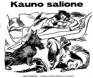 """Kauno salione"""