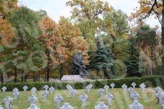 Aukštųjų Šančių karių kapinės. 2008 m.