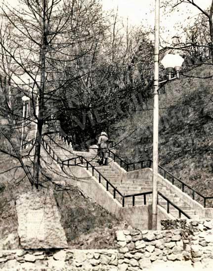 1923 m. pastatyti laiptai iš E. Ožeškienės g. į Ukmergės pl. (dab. Savanorių pr.). 1982 m.