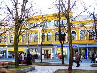 Kauno miesto savivaldybės Vinco Kudirkos viešoji biblioteka