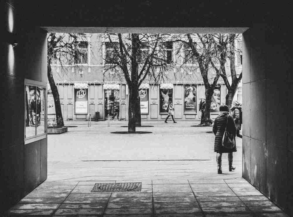 Pro Kauno valstybinio lėlių teatro vartus į Laisvės alėją. Fotografas: Arvydas Čiukšys.